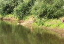 Водолазные поиски на реке Сок