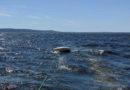 Три человека спасены с терпящего бедствие судна